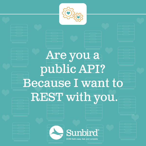 Are you a public API? Because I want to REST with you.